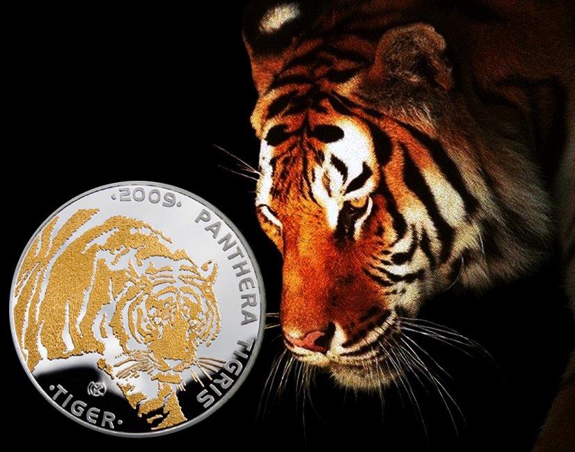 100 tenge, Ginące Gatunki Zwierząt - Tygrys, 2009