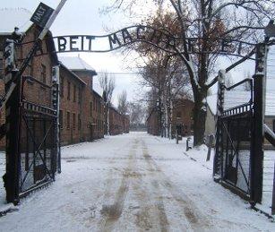 2 zł, 65. rocznica oswobodzenia KL Auschwitz-Birkenau, 2010