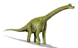 Kolekcja DINOSAURIA: Brachiosaurus, 2009
