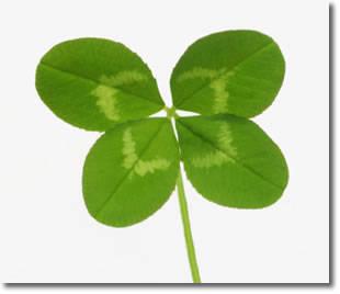 1 $, Lucky Coins - Monety na szczęście - Czterolistna koniczyna
