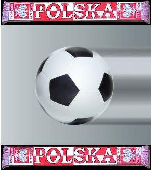 1 $, Polskie Stadiony 2012 - Gdańsk, 2010