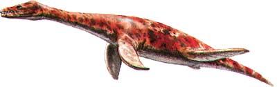 Kolekcja DINOSAURIA: Plesiosaurus, 2009