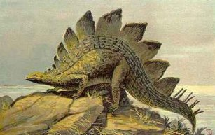 Kolekcja DINOSAURIA: Stegosaurus, 2009