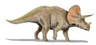 Kolekcja DINOSAURIA: Triceratops, 2009