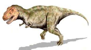 Kolekcja DINOSAURIA: Tyrannosaurus rex, 2008